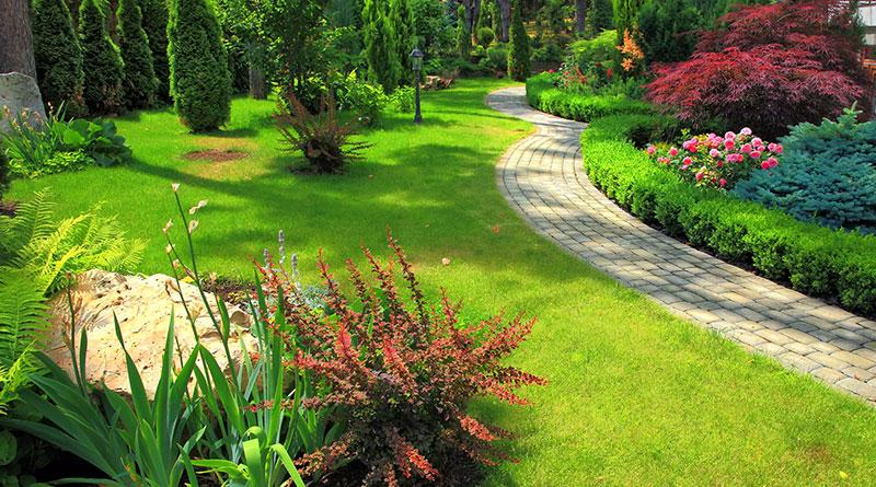 Pflasterweg im Garten vom Profi